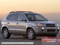 Xe Hyundai Tucson 2.0AT 2WD 2009, màu xám, nhập khẩu chính hãng, số tự động