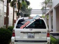 Bán ô tô Ford Escape 3.0 2004, màu trắng
