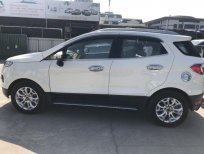 Xe Ford EcoSport AT 2015, màu trắng