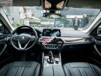 Bán xe BMW 5 Series 530i sản xuất 2019, màu đen, nhập khẩu Đức