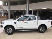 Cần bán Ford Ranger sản xuất năm 2019, xe nhập giá cạnh tranh. Liên hệ 0904526599 để nhận ưu đãi tốt nhất