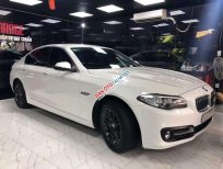 Bán BMW 5 Series 520i năm sản xuất 2015, màu trắng