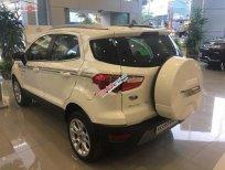 Bán Ford EcoSport Titanium 1.5L AT sản xuất năm 2019, màu trắng