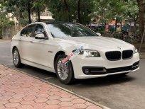 Cần bán BMW 5 Series 520i đời 2015, màu trắng, nhập khẩu