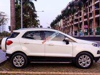 Cần bán lại xe Ford EcoSport Titanium 2015, màu trắng chính chủ