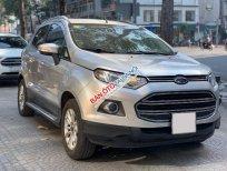 Cần bán gấp Ford EcoSport Titanium đời 2015, màu bạc, 450 triệu