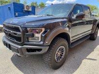 Cần bán xe Ford F 150 Raptor đời 2021, màu xám, nhập khẩu nguyên chiếc