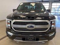 Cần bán Ford F 150 Limited 2021, màu đen, xe nhập Mỹ