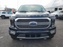 Ford F 150 Limited 2021, màu xanh lam, nhập khẩu, nhiều ưu đãi