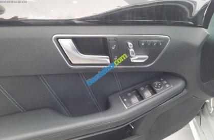 Cần bán gấp Mercedes E250 đời 2013, màu bạc